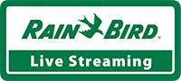 Rain Bird – Live Streaming